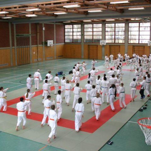 Ju-Jutsu-Lehrgang