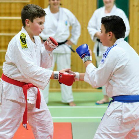 Ju-Jutsu-Wettkampf